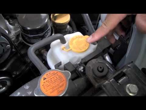 Maita Subaru Service Tip Checking Coolant Level Youtube