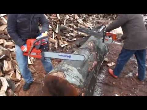 Stihl vs husqvarna husqvarna vs stihl competition youtube for Comparatif debroussailleuse stihl husqvarna
