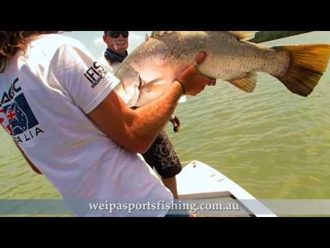 Weipa Sports Fishing