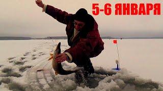 Зимняя Рыбалка с Ночевкой Можайка 5 6 Января Золотые слова от Димы Больнички о рыбалке