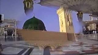 Hafiz Sohail Ahmad new naat- Sta didan mi pa zargi bandi warigi