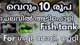 How to make a easy fish tank for guppy, platti, moli using flux board/അടിപൊളി ഫിഷ് tank വെറും10രൂപ