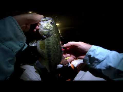 Night Fishing Below Center Hill Dam for Bass