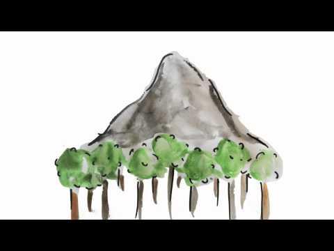 bjerget i skoven