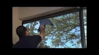 Тонировка пластиковых окон