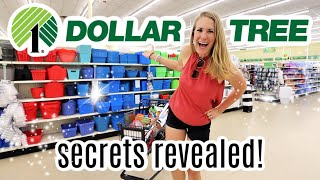 $1 Dollar Tree Secrets from an Organizing Pro!  (new products!)