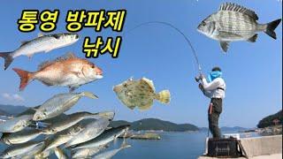 [통영로기] 138회 수족관인가? 방파제인가? 통영 방…