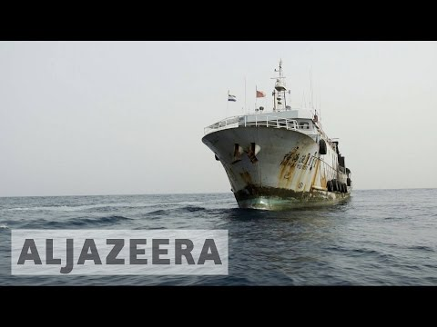 Greenpeace exposes illegal fishing activities in Sierra Leone
