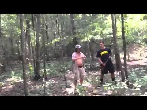 Beaver wars II
