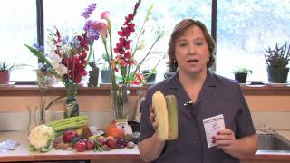 Gardening Lessons : How to Grow Corn