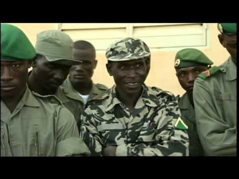 Islamic Militants in Mali Seize Control, Impose Sharia Law