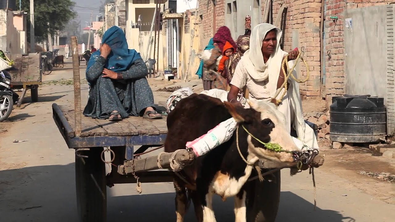 No Toilet, No Bride Say People From 110 Villages Across