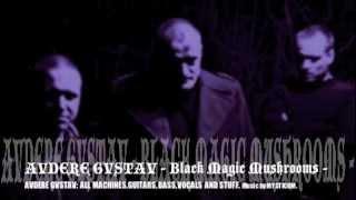 AVDERE GVSTAV-BLACK MAGIC MUSHROOMS-