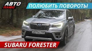 Отличие нового Subaru Forester SK от старого