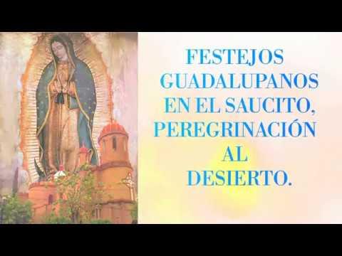 Fiestas a la virgen de guadalupe 2017 San Luis Potosí