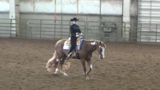 Ellie Becker Horsemanship video 2