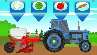 Tractor Vehicles for Kids | Animation - Watermelon Harvest | Bajki Traktory Dla Dzieci - Arbuzy