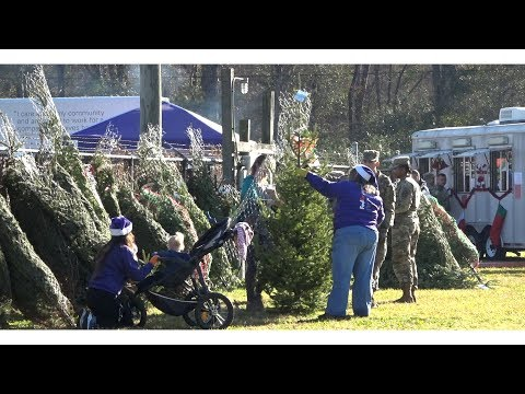 Free Christmas Trees For Troops!
