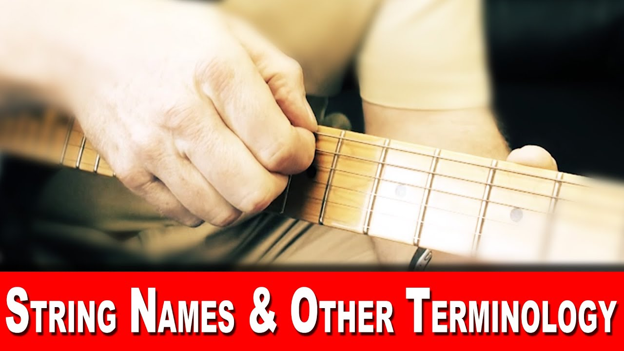 Guitar Terms Guitar Anatomy Guitar String Names Guitar