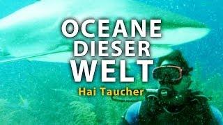 Ozeane dieser Welt - Hai Taucher (2011) [Dokumentation] | Film (deutsch)