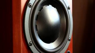 Bass i love you dynaudio