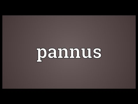pannus-meaning
