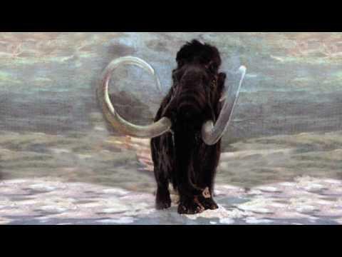 Почему вымерли мамонты? Рассказывает палеонтолог Иварс Зупиньш