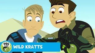 Wild Kratts: Cobra Venom thumbnail