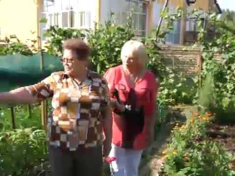 Сад, огород и цветник. Краснолучанка показала, как на трех сотках земли найти место для всего.