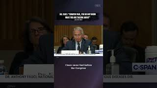 """Dr. Fauci: """"I have not lied before Congress."""