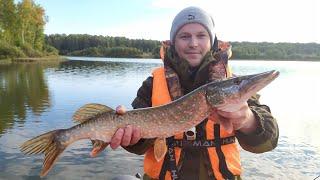 Рыбалка на ЩУКУ в октябре Коптим Щуку Собираем грибы