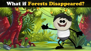 What if Forests Disappeared? | #aumsum #kids #science #education #children