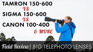 Zoom Telephoto Field Review Tamron 150-600 vs Sigma Sport 150-600 vs Canon 100-400 & more HD