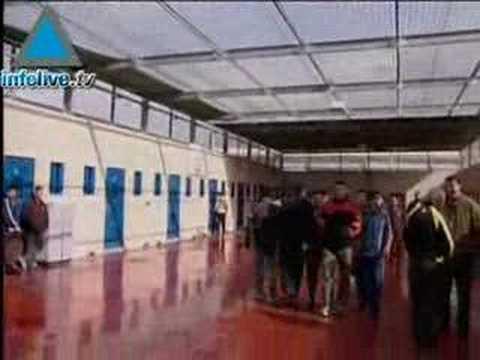 Israël Libère 87 Prisonniers Palestiniens