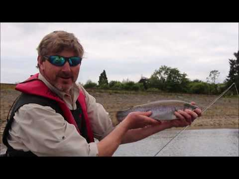 Fly Fishing Tutorials: Catch More Trout On Dry Flies