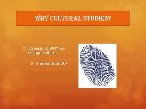 Session 2   Why Cultural Studies