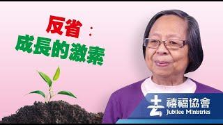 禧福協會 -反省:成長的激素