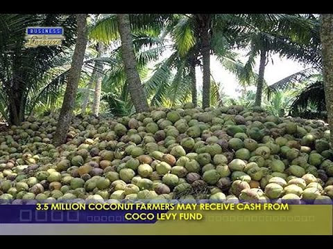 3.5 MILLION COCONUT FARMERS MAY RECEIVE CASH FROM  COCO LEVY FUND - BIZWATCH
