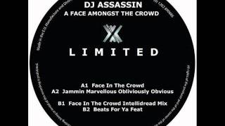 DJ Assassin - A Face In The Crowd - Original Mix
