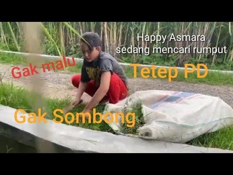 video-viral-:-happy-asmara-gk-malu-cari-rumput-(-ngarit-)