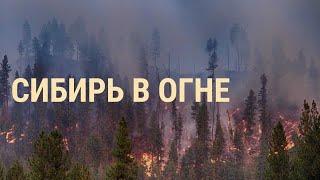 Потушит ли армия пожары   ВЕЧЕР   31.07.19