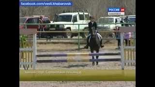 Вести-Хабаровска. Конный спорт. Соревнования по конкуру