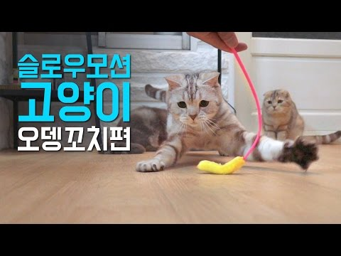 슬로우모션 고양이 - 오뎅꼬치 Slow Motion Cat - Fur Rod Cat Toy [SURI&NOEL]