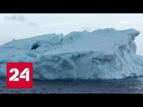 """""""Роснефть"""" научилась буксировать айсберги весом в миллион тонн"""