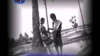 Download Mp3 255 03 Toto Pura Ripattentu ~ Anthyaura