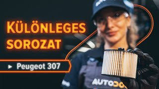 Hogyan cseréljünk Csapágy Tengelytest PEUGEOT 307 SW (3H) - video útmutató