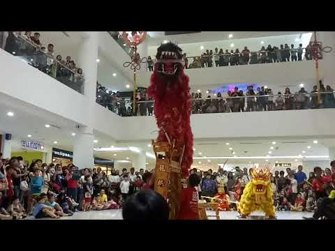 Unicorn Lion dance 2018