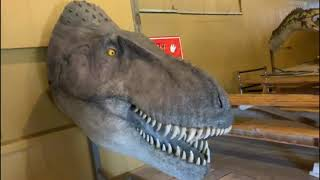 Dinosaur Museum - Rapid City, South Dakota