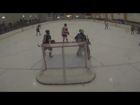 Carolina Eagles Bantam AA - Pittsburgh Tournament vs. Port Huron, Michigan - We Won 4-2