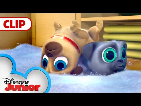 Cleanin' Pup! | Puppy Dog Pals | Disney Junior - YouTube